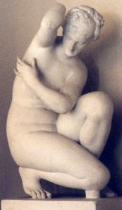 Armpit Aphrodite